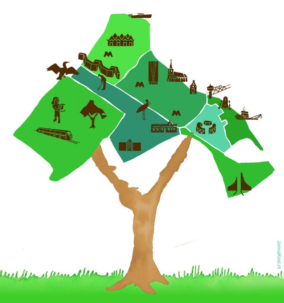 Illustratie van een boom waarbij het bladerdek Capelle van bovenaf is