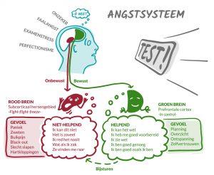 Angstsysteem infographic ontwerp voor Rotterdamse ondernemer Anke Boereboom Illustraties, iconen en infographics tegen faalangst